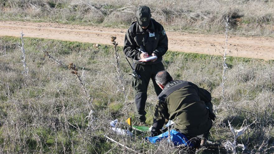 Agentes Medioambientales retiran cebos envenenados / Foto: JCCM