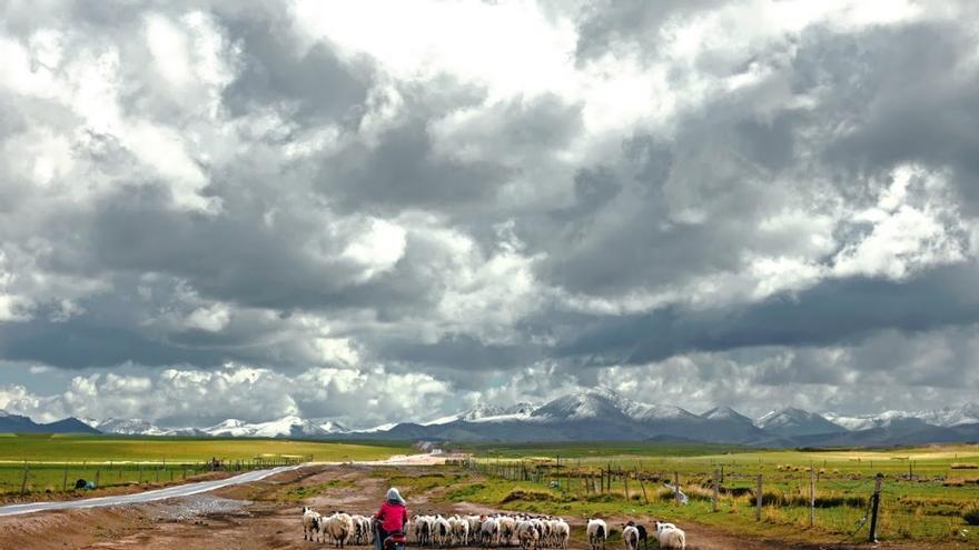 Paisaje junto al lago Qinghai, en China.