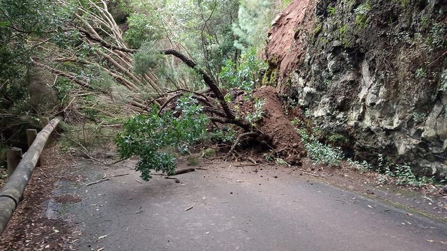 Imagen del derrumbe en la carretera de La Mimbreras.