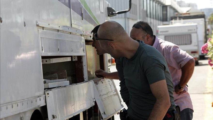 Hallan a cuatro inmigrantes ocultos en los bajos de camión en puerto de Ceuta