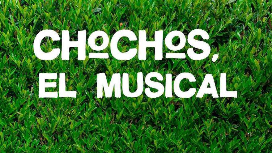 Cartel de 'Chochos, el musical'
