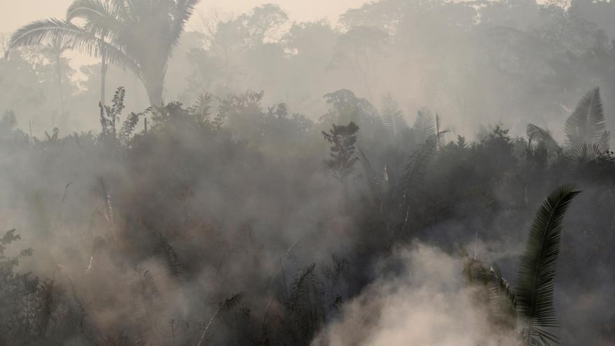 El humo impide la vista de la flora del amazonas en Humanita, Brasil 14 de agosto