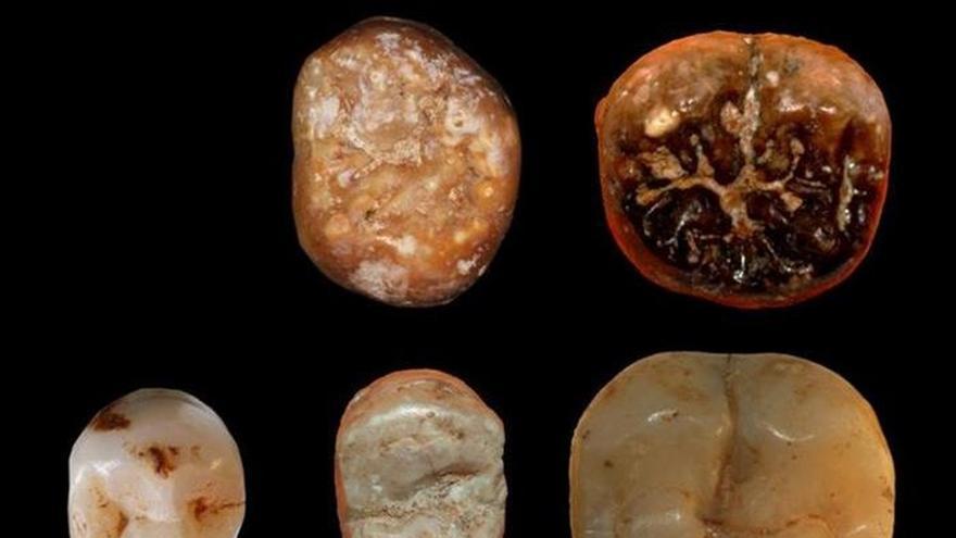 Un equipo israelí descubre cómo comían nuestros ancestros hace unos 400.000 años