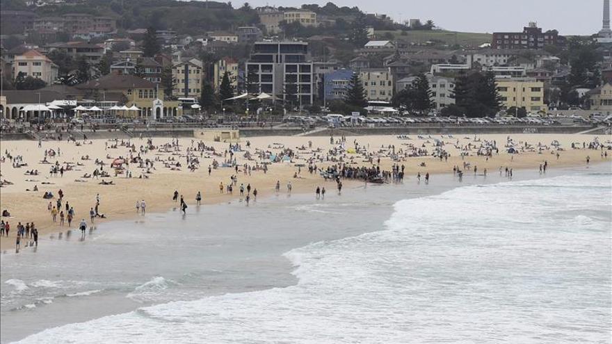 Avistan más de 60 tiburones en 48 horas en la costa este australiana