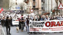 Vecinos de Zaldibar y alrededores durante una de las manifestaciones convocadas tras el derrumbe