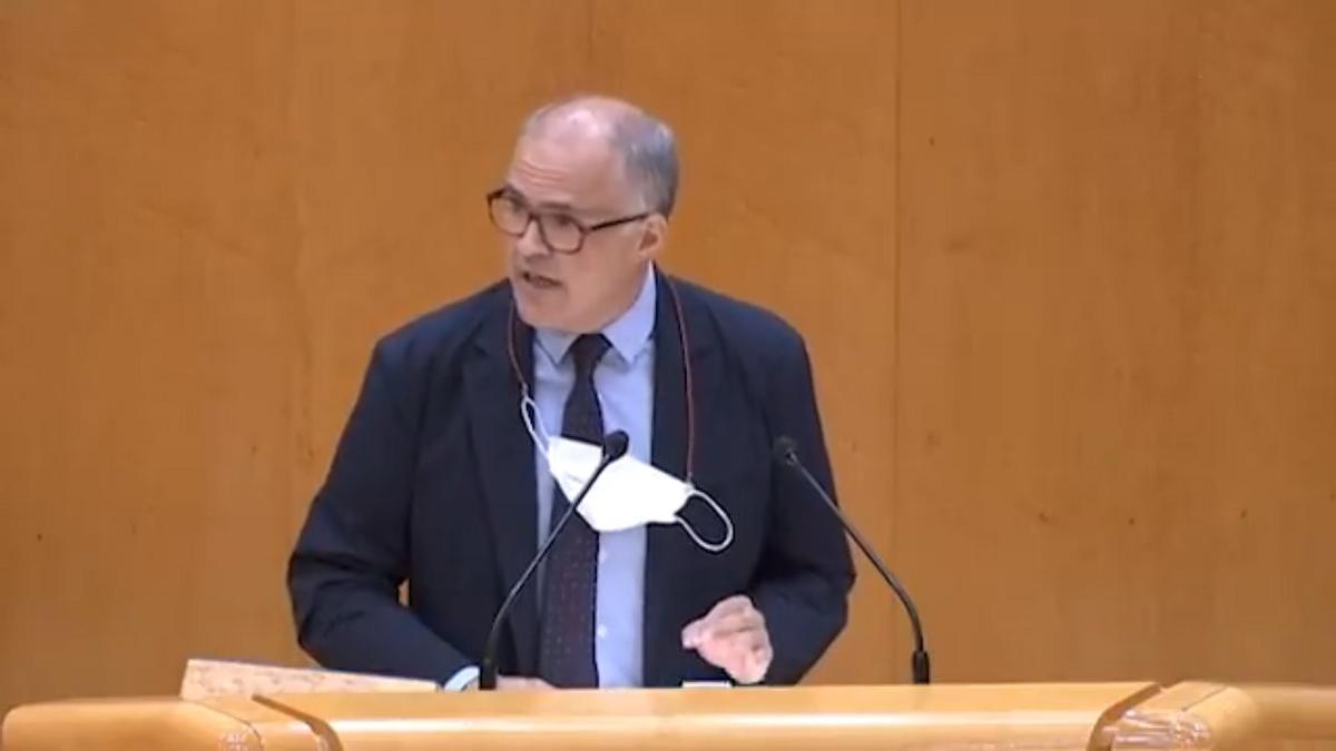 Fernando de Rosa, durante su intervención en el Senado.