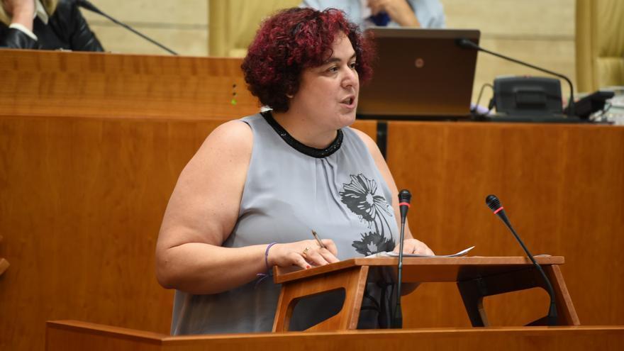 La consejera de Medio Ambiente Begoña García Bernal, en sede parlamentaria / Asamblea