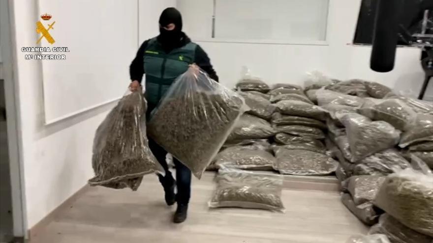 La Guardia Civil halla en una nave de La Mojonera (Almería) 5.674 kilos de cogollos de marihuana envasada en el marco de la 'operación Imprevisto'.