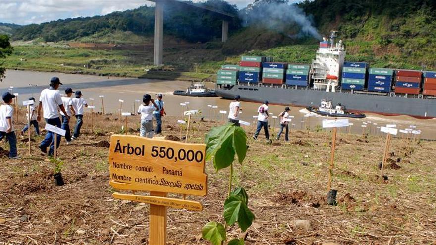 La reforestación tiene un impacto ambiguo sobre el agua para el Canal de Panamá