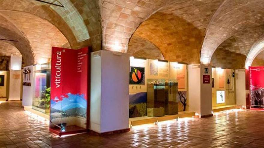 El Museo del Vino de Bullas recibe una mención especial a Mejor Establecimiento Enoturístico en los Premios Rutas del Vino de España