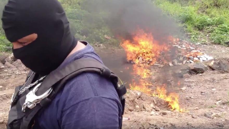 La policía hondureña quema un cargamento de cocaína de una tonelada.
