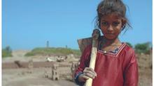 La explotación del trabajo infantil aumenta en la industria tabacalera