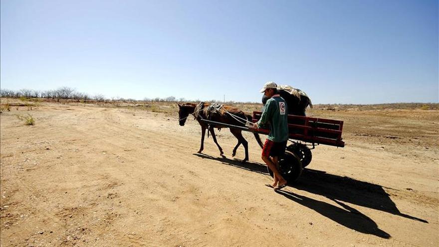 República Dominicana sufre su peor sequía en 20 años, según expertos y autoridades