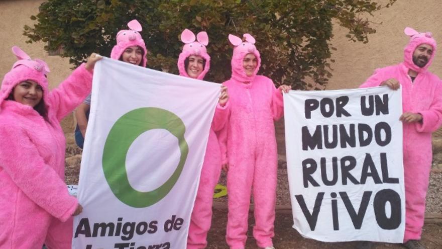 Campaña contra las macrogranjas porcinas