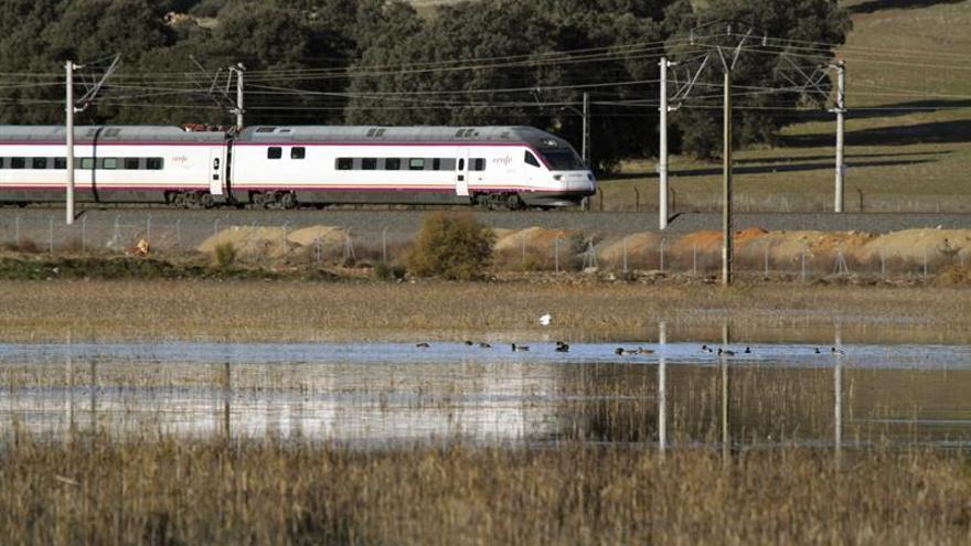 """Compromís """"plantará"""" a Rajoy en Castellón porque """"no llega la alta velocidad"""""""