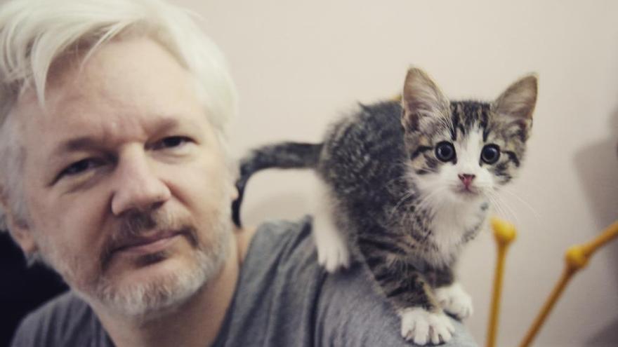 Julian Assange y su nuevo compañero de piso