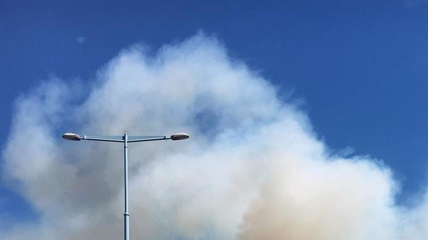 Un incendio en el parque de Collserola origina una gran nube de humo en Esplugues (Barcelona)