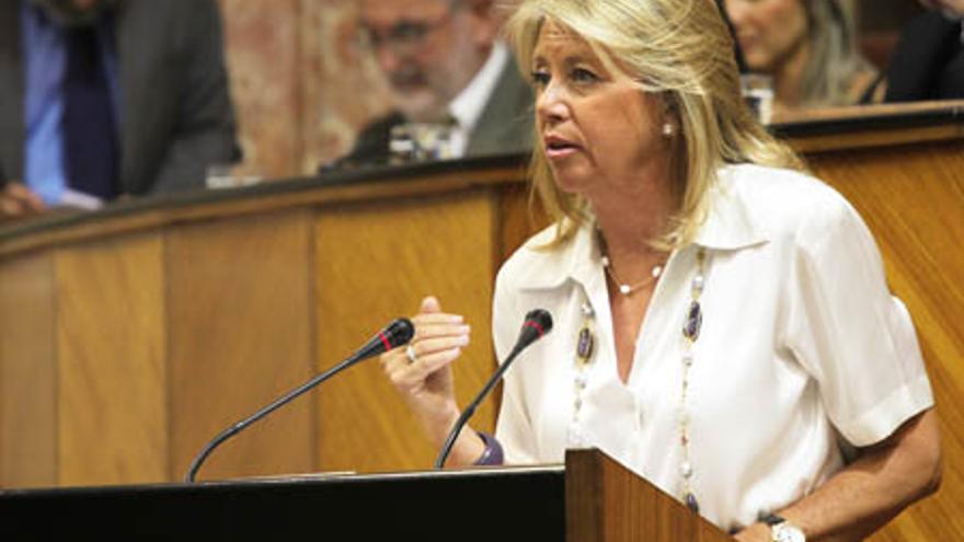 La alcaldesa de Marbella tampoco declaró ante el Parlamento su inversión millonaria en Luxemburgo