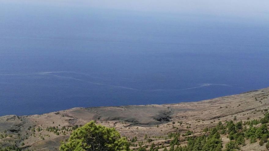 Microalgas en el Mar de Las Calmas