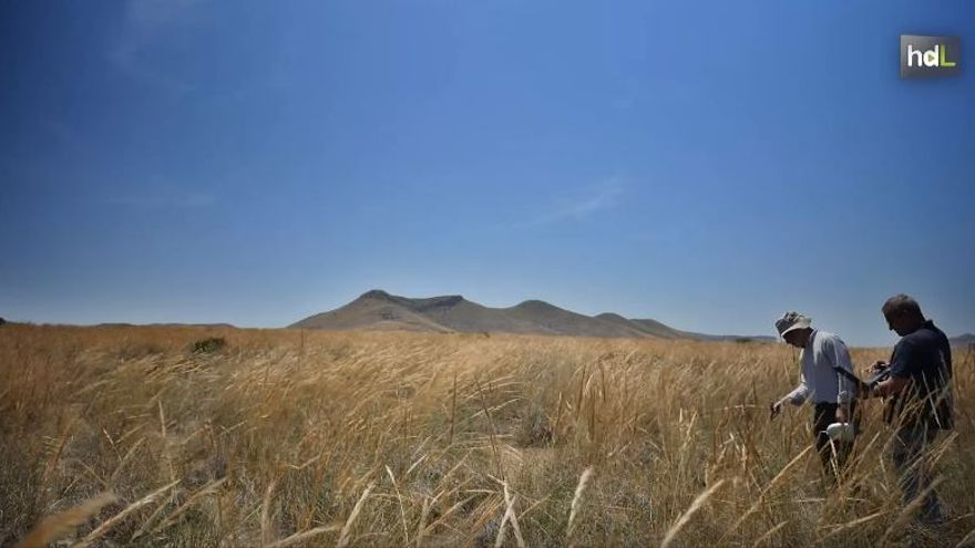 La emisión de gases a la atmósfera provoca que el clima sea cada vez más cálido.