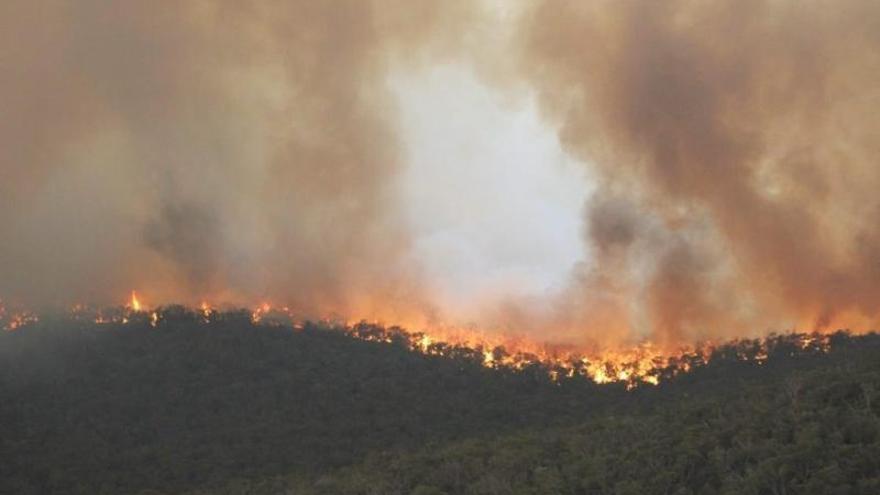 Los incendios empeoran en el este de Australia con llamas de hasta 40 metros