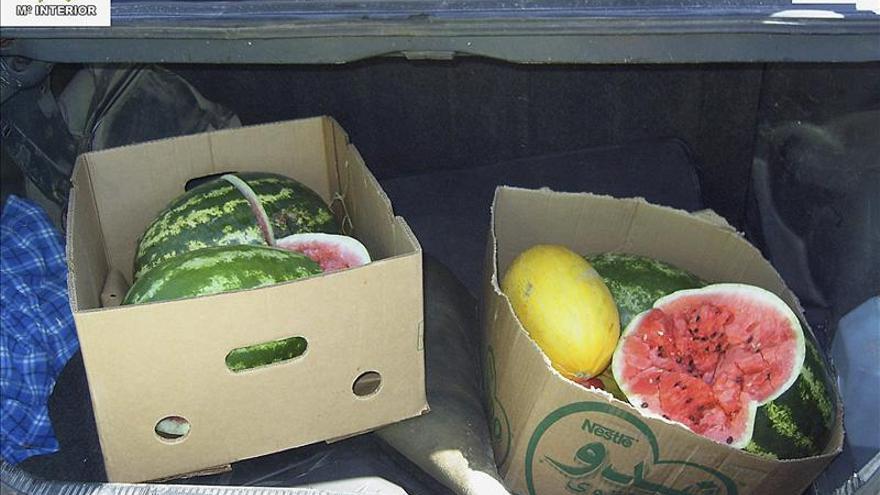 Dos detenidos por introducir droga en Melilla oculta bajo cajas de frutas