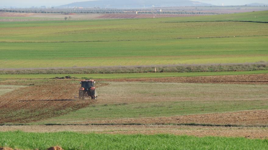 Cultivos en La Mancha