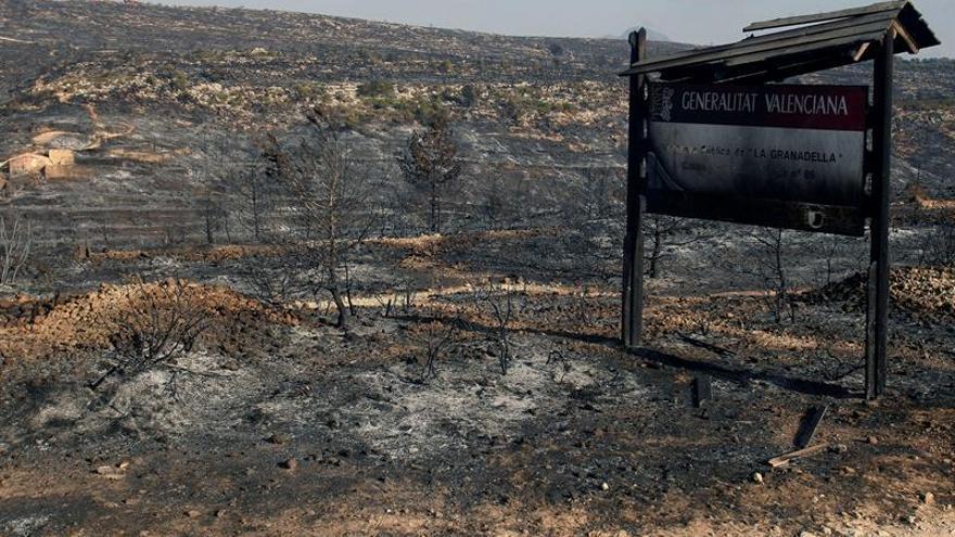 El fuego de Bolulla quema 600 hectáreas e investigan posible origen provocado