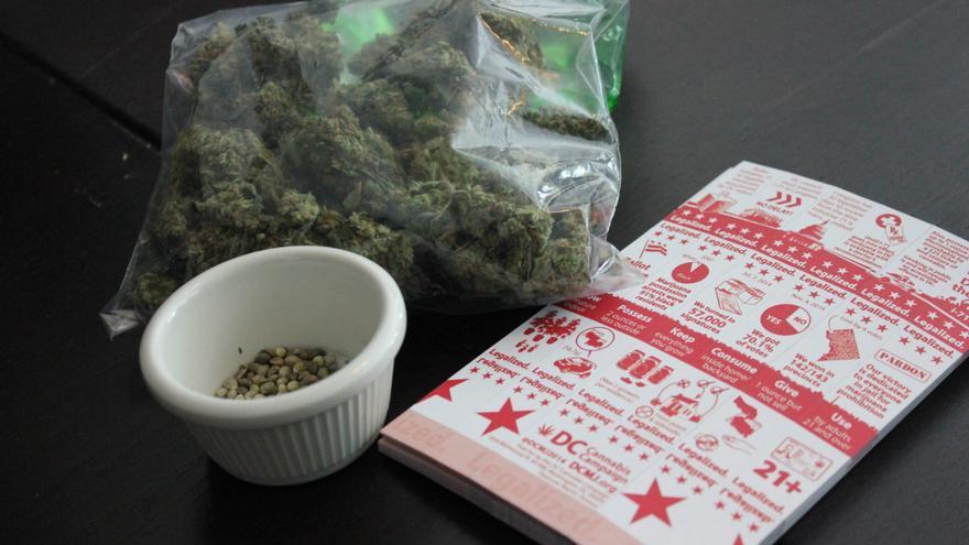 Argentina abre un registro de semillas de cannabis para cultivo con fin médico