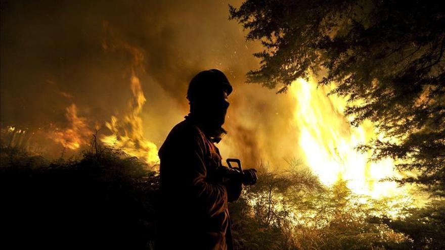 Casi 1.500 bomberos combaten once grandes incendios en el norte de Portugal