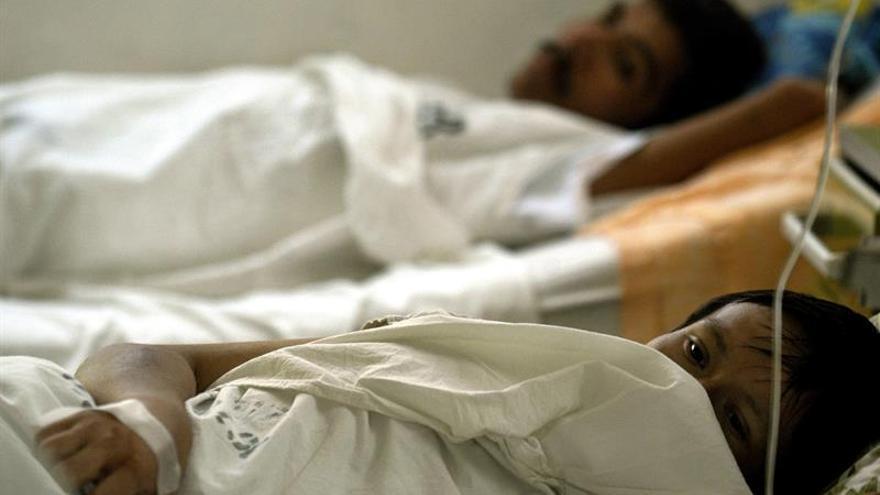 Un estado brasileño declara emergencia por la fiebre amarilla