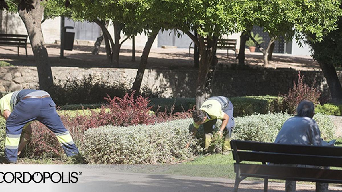 Dos operarios trabajan en los jardines de Orive.