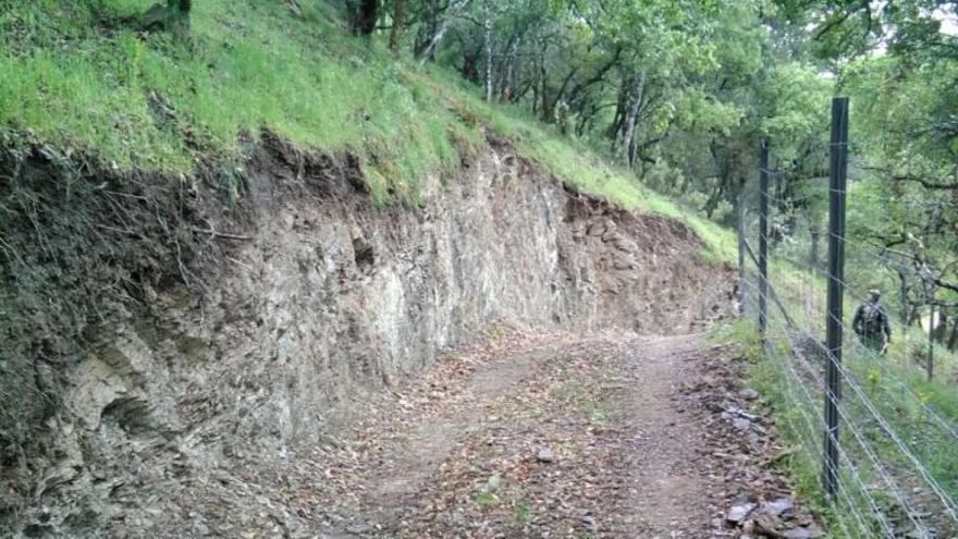 Pista forestal abierta en la finca de la familia Koplowitz en el Parque Natural Sierra de Hornachuelos (Foto. Ecologistas en Acción)