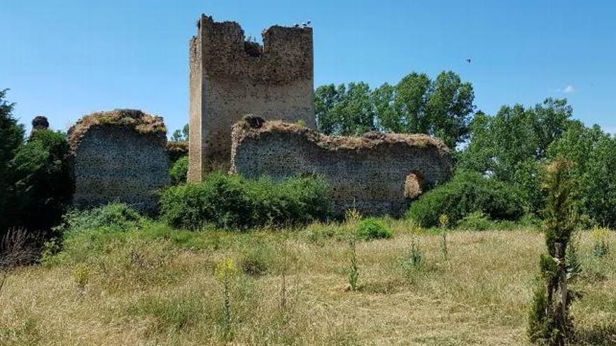 Los restos del castillo de Villapadierna.