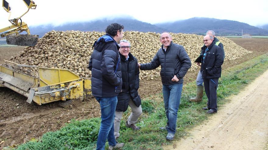 """González destaca que la remolacha es un cultivo """"estratégico"""" para el sector primario alavés"""