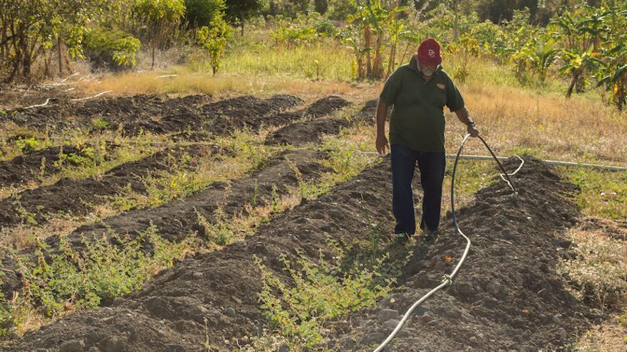 Las organizaciones pusieron de manifiesto la necesidad de que las políticas públicas dignifiquen al campesinado, por ejemplo, a través del fomento de la agroecología.