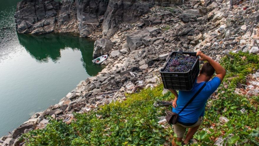 Viticultura heroica: qué es y dónde podemos encontrarla en España