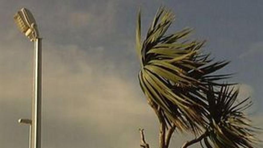 Vuelve el viento.