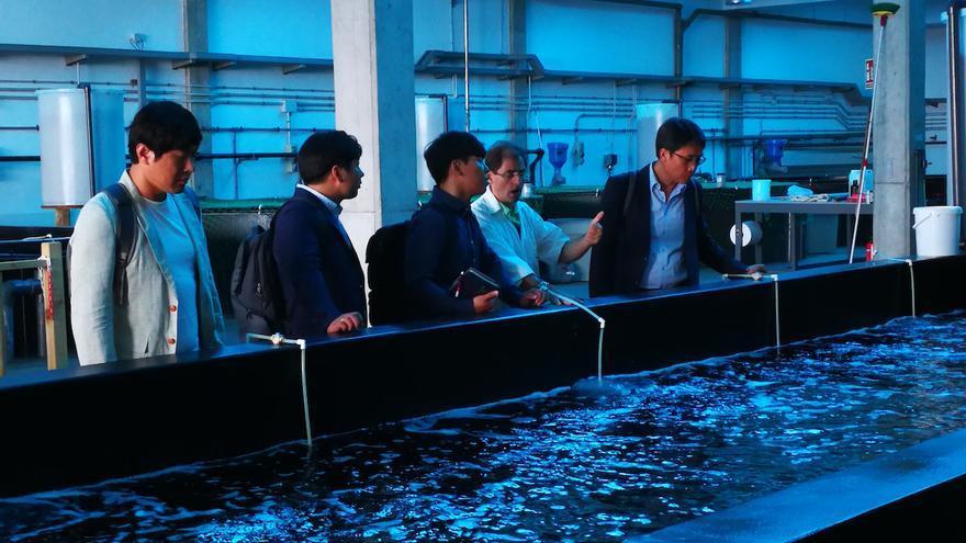 El Instituto Coreano de Ciencia y Tecnología Oceánica firmará convenios de biotecnología azul en Gran Canaria.