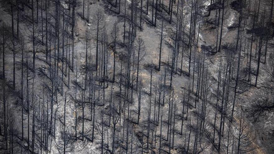 Continúan los trabajos para la extinción a la semana del incendio en La Palma