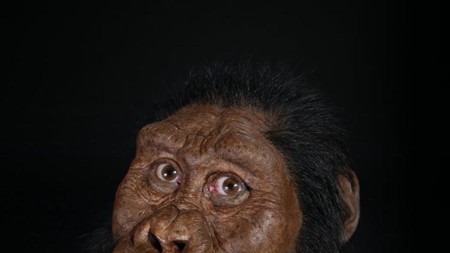 Reconstrucción facial del MRD.