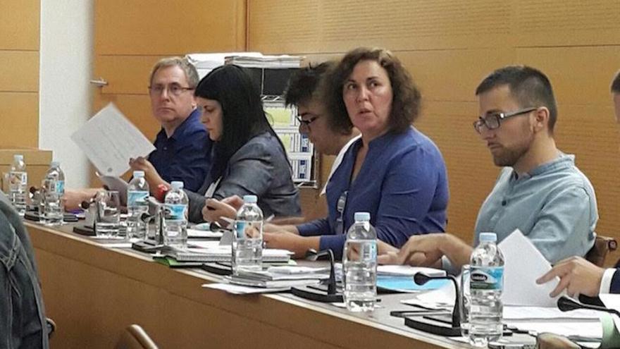Consejeras y consejeros de Podemos en el Cabildo de Tenerife