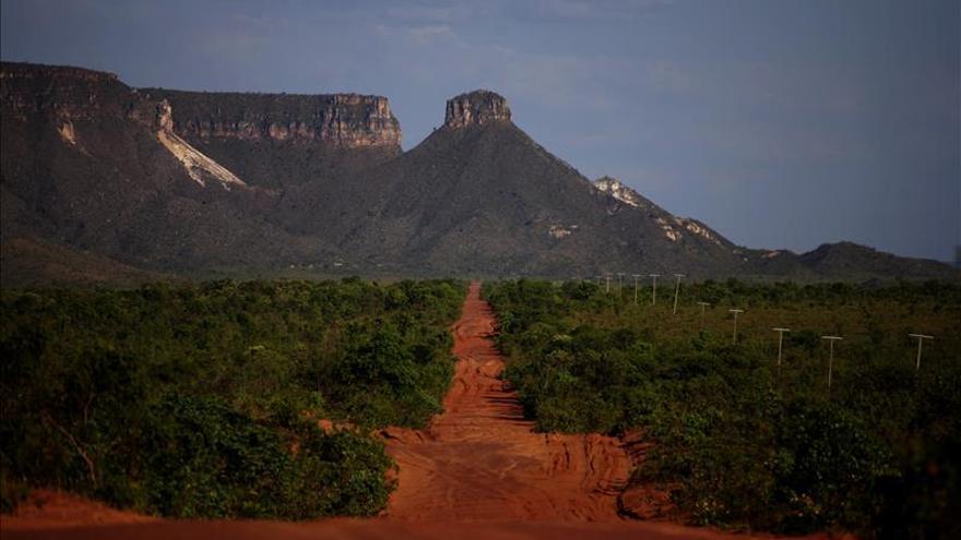 Alianza de Reservas Privadas impulsan una bolsa latinoamericana de carbono