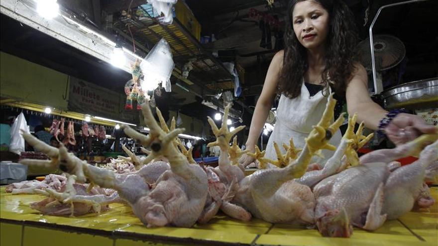 Aumentan a 24 los muertos por la gripe aviar H7N9 en China