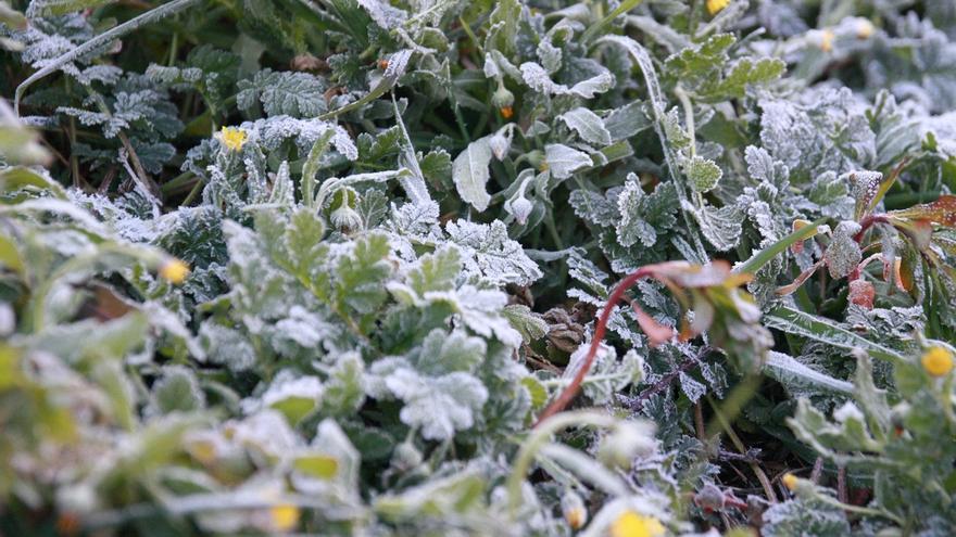 La temperatura baja hasta los -4,5 grados en Otxandio (Bizkaia) y Berastegi (Gipuzkoa)