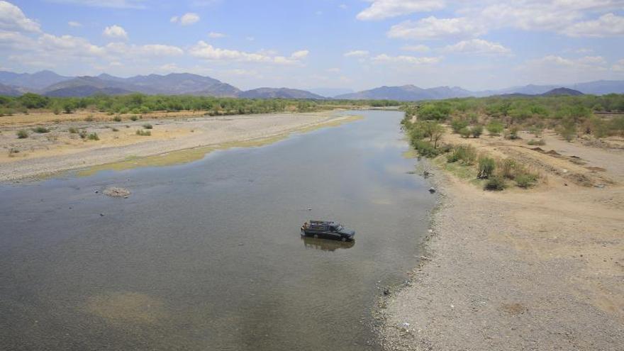 El Salvador descarta daño en más de 10.400 hectáreas de cultivo por sequía
