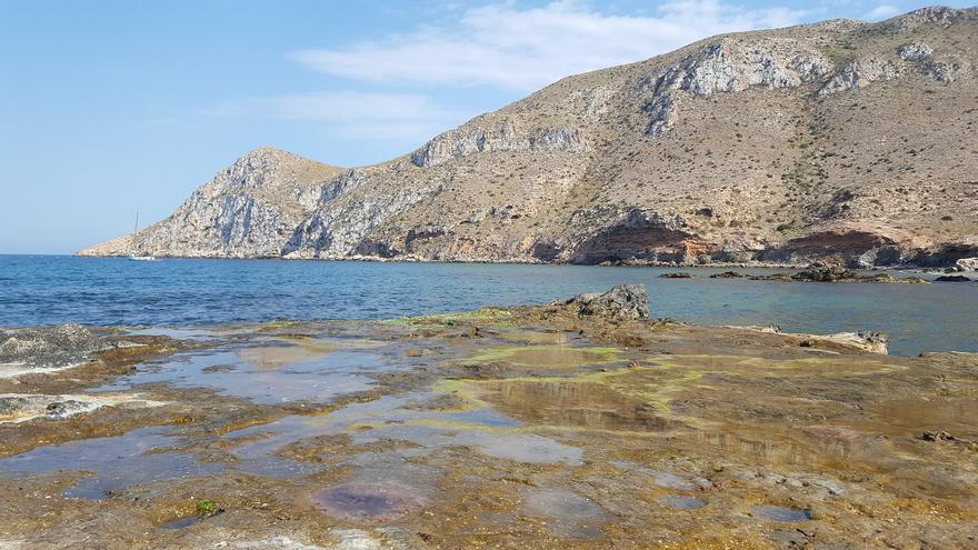 Vista de Cabo Cope desde la playa de Cope / Wikipedia