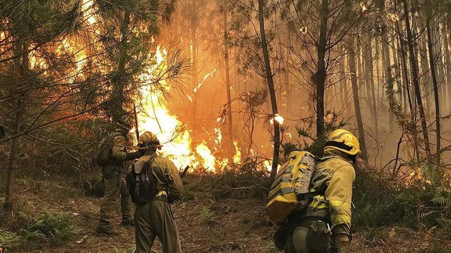 """Ochenta fuegos queman Galicia mientras la Xunta habla de """"intencionalidad"""""""