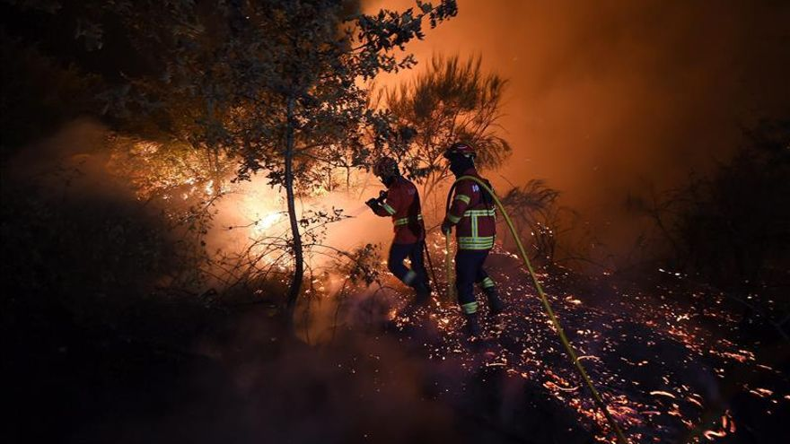 Un incendio en el norte de California (EE.UU.) arrasa 1.600 hectáreas