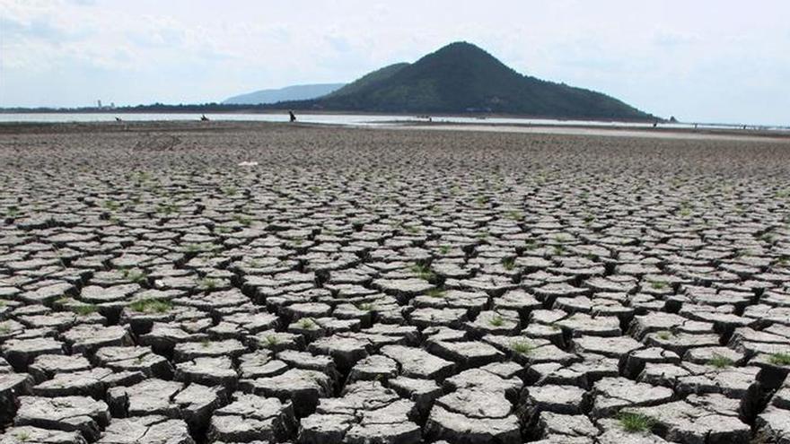 La escasez de agua pone en riesgo la producción de alimentos, según la FAO
